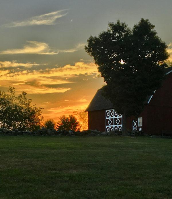 Ambler Summer Sunset
